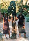 makonde_sculpture_sheitani_peter_kalulu_223cm_2